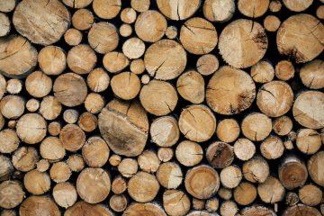 legna del nord